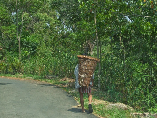 At Mwallynong, Meghalaya. PC - Prashanth Krishnan